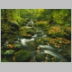 Roaring_Fork_Timed_Exposure_Great_Smoky_Mountains_Tennessee.jpg